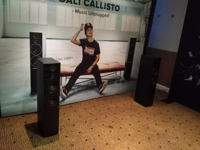 Enceinte Dani Callisto Festival Son & Image 2017