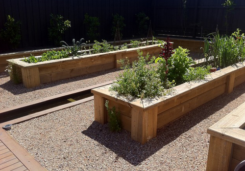 Pine Wood Planter Box