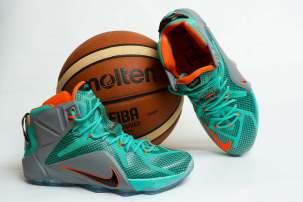 Nike Lebron James 12
