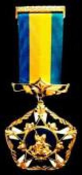 медаль За заслуги и достижения