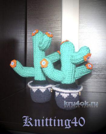 Цветущий кактус крючком. МК от Анны Касьяновой