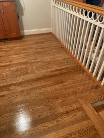 10 23 5 - New Hardwood Flooring