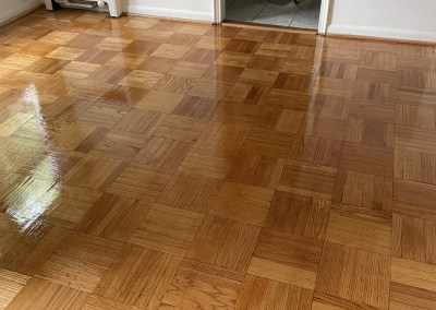 Blessed To Have Such An Awesome Team – Beautiful New Runner/Parquet Sand-Finish/LVP Installation