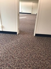 3 6 pic 1 - Beautiful New Carpet!