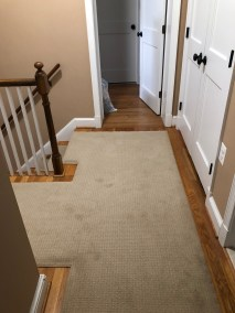 Jose 3 - New Carpeting and Stairs