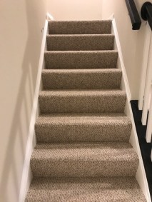 carpet stairs 4 - New Carpeted Stairs