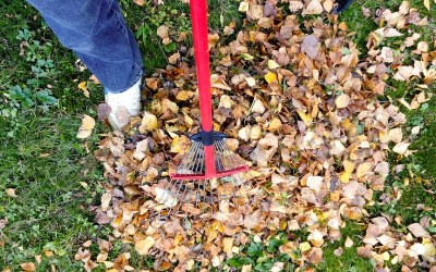 Take the Initiative on Fall Home and Yard Jobs