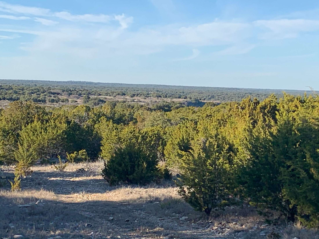 Kruse Texas Ranches For Sale
