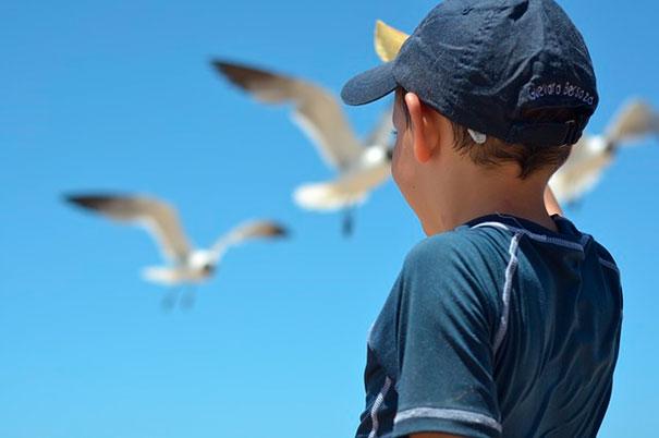 Советы от местных жителей: куда сходить с ребёнком в Анапе