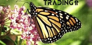 motýľ butterfly