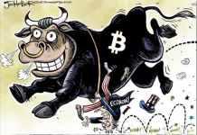 Bitcoin bull high