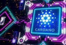 Cardano Mary hard-fork