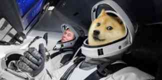 Elon Musk a DOGE