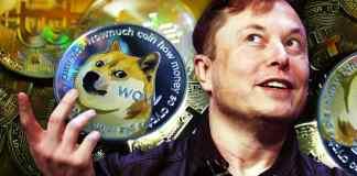 Elon Musk a Doge coin