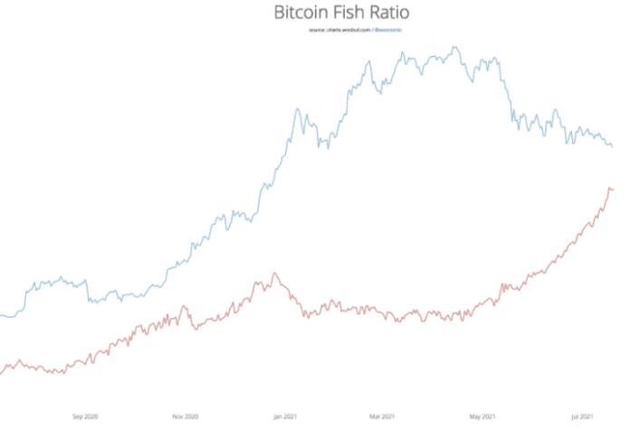 Pomer investorov Bitcoinu. Zdroj: Willy Woo/Twitter