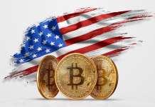 USA BTC Bitcoin. Zdroj: Shutterstock.com/Marko Aliaksandr