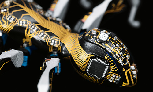 Robot Ants Rising
