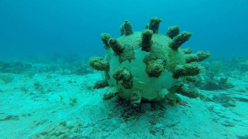 Krystal Cancun Timeshare Reviews Diving in Cancun (4)
