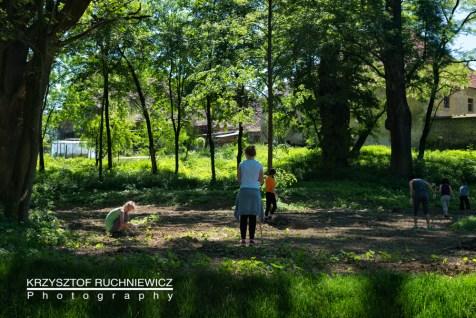 2015-06-05_gorzanow_park_praca (1 von 1)