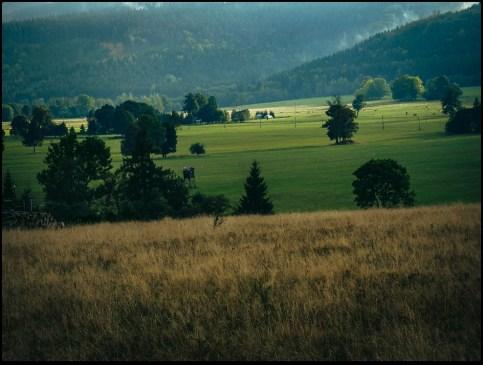 Cisza doliny Orlicy – kocham to miejsce.