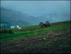 Trój-styk Polsko-Czesko-Słowacki w Beskidzie Śląskim oznacza, iż kozy są nasze, przestrzeń za nimi to Czechy, a wiadukt budują już Słowacy. Uwielbiam przekraczać granice …