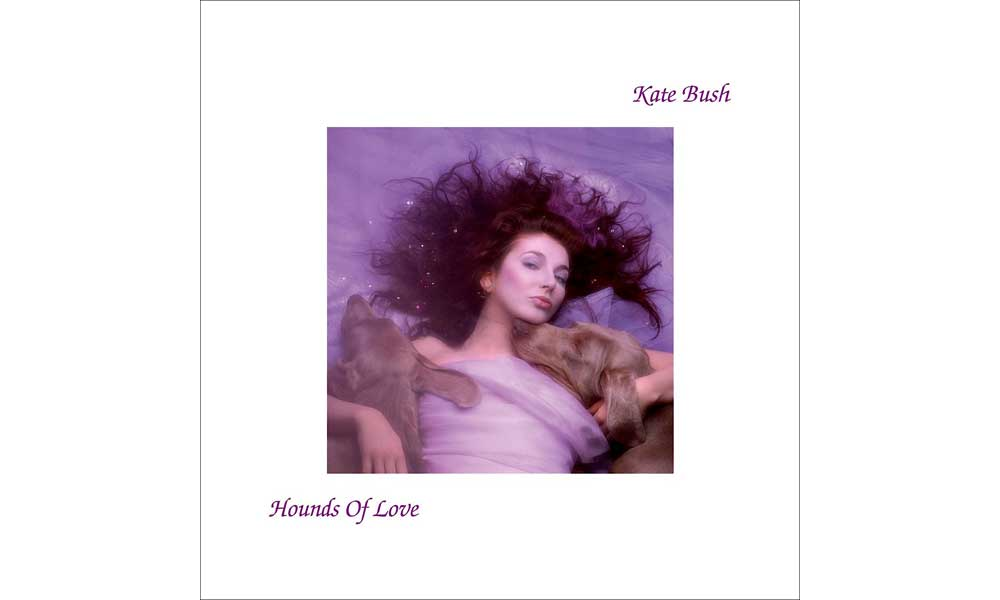 Image result for hounds of love kate bush