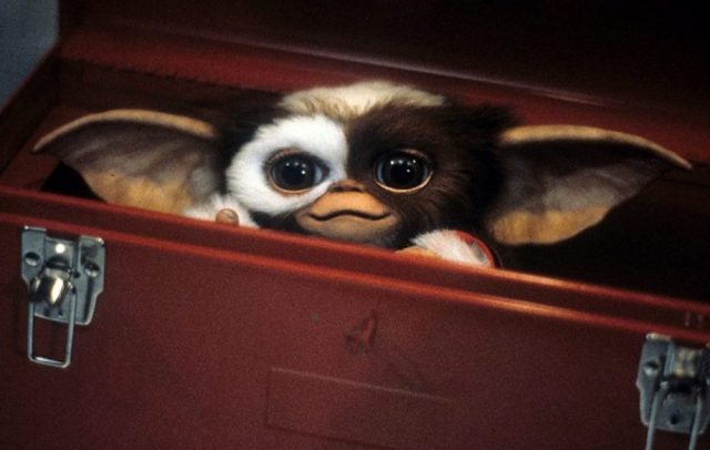 Image result for gremlins movie press release image