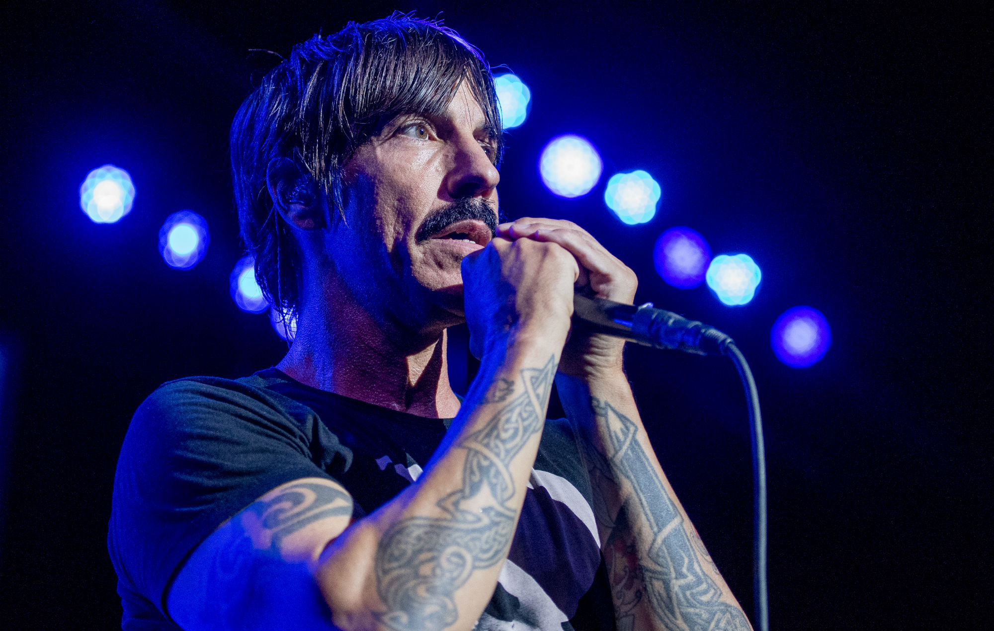 The power of equality is my favorite rhcp song and 29 years. Watch Red Hot Chili Peppers give a surprise Halloween ...