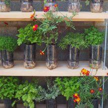 Budget Garden Ideas Cheap Gardening