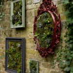 How To Make A Wall Garden With Succulent Plants In Picture Frames Ideal Home