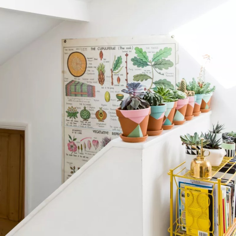 staircase with potted plants