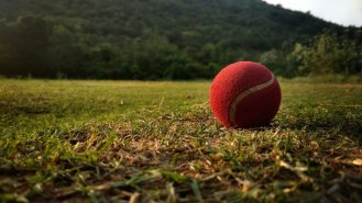 Investment and Cricket