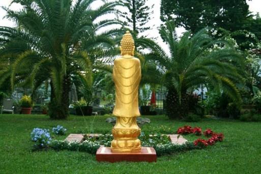 Buddha And Garden
