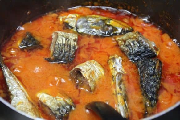 mackerel  stew. Mackerel fish in Nigerian stew.