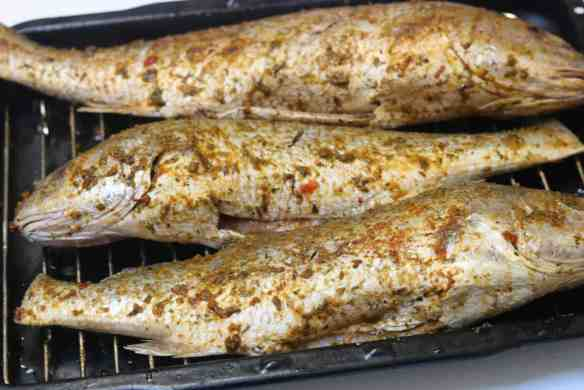 Grilled Croaker Fish