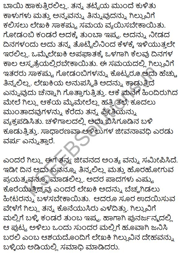 गिल्लू Summary in Kannada 3