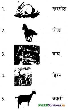 KSEEB Solutions for Class 6 Hindi वल्लरी Chapter 19 हाथी मेरा साथी 3