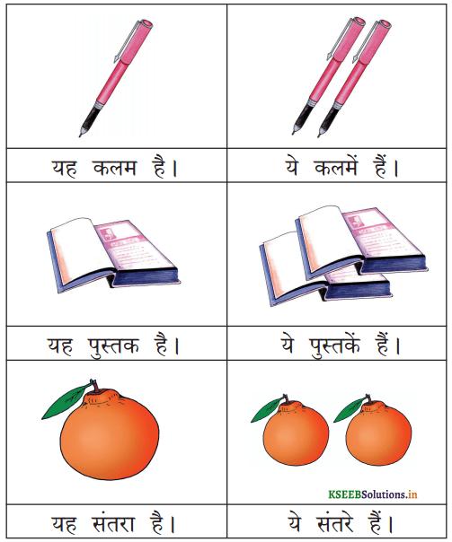 KSEEB Solutions for Class 6 Hindi वल्लरी Chapter 9 यह, ये, वह, वे 1