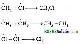 1st PUC Chemistry Question Bank Chapter 13 Hydrocarbon - 24