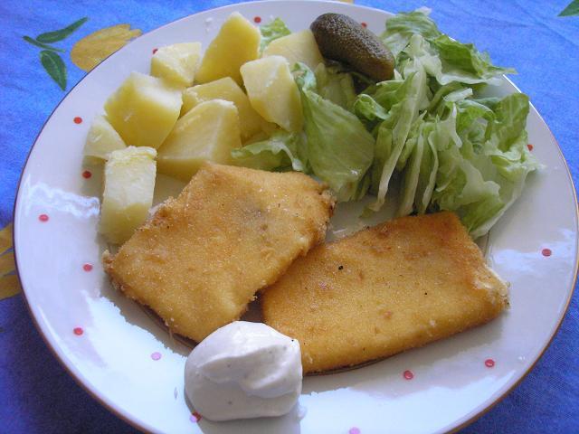 Vyprážaný syr - smażony ser