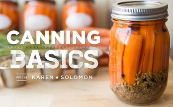 canning 101 canning basics pickled carrot recipe video class