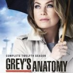 Grey's Anatomy Saison 12 streaming