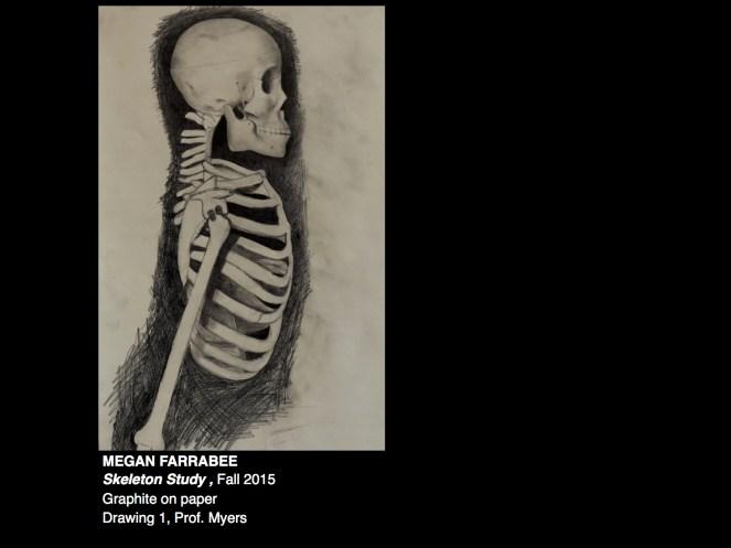 Drawing 1 Skeleton Study