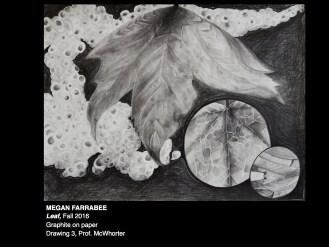Drawing 3 Leaf