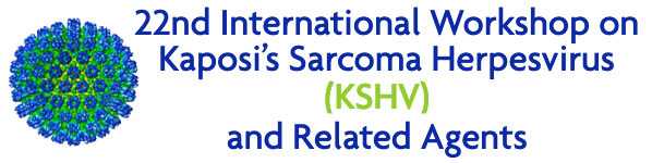 Kaposi's Sarcoma Herpesvirus (KSHV) & Related Agents