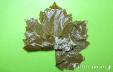 Ντολμαδάκια Γιαλαντζί- τύλιγμα 2