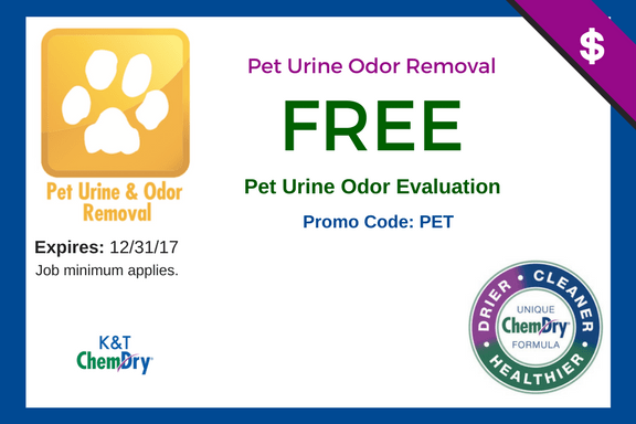 kt pet urine coupon