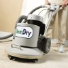 chemdry carpet cleaning