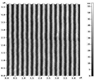TDG - AFM Diffraction Grating