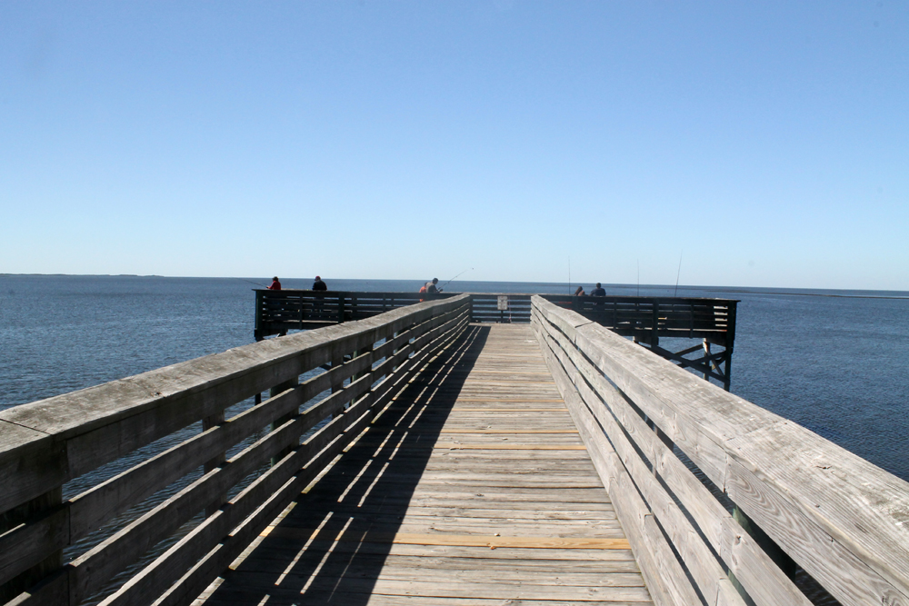 Fort Island Trail